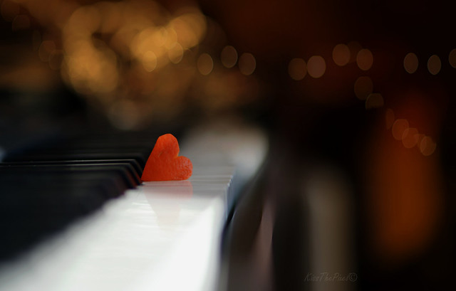 'Playin' with Oranges and Love Songs..