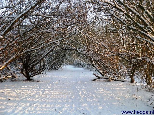 16-01-2013 Blokje wandelen 7.5 Km (41)