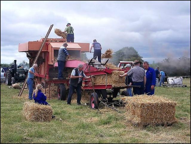 Old Time Farming Scene ..
