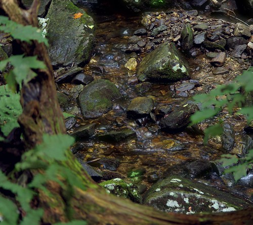 water rock stone creek pentax connecticut newengland ct brook k3 2013 vbd indianwellsstatepark smcpentaxda55300mmf458ed indianholebrook pentaxk3 summer2014