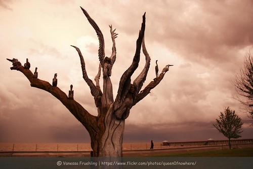 sky sculpture usa cloud storm tree beach strand unitedstates united himmel wolke skulptur angels states engel baum sturm