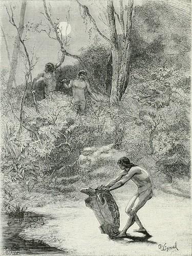 """Image from page 73 of """"América pintoresca; descripcion de viajes al nuevo continente por los mas modernos exploradores"""" (1884)"""