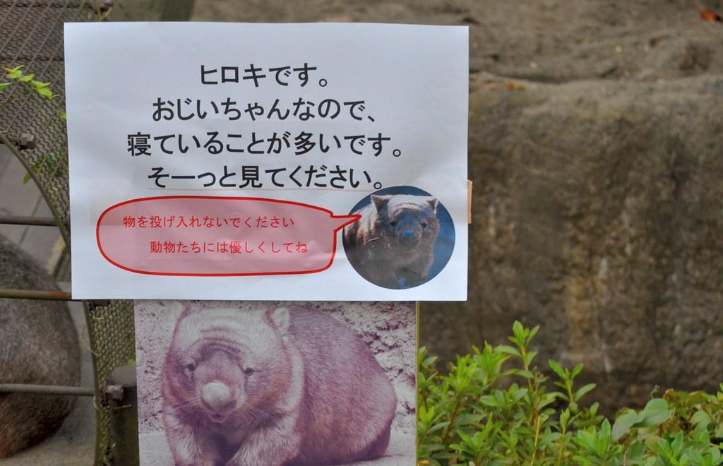 20131103_160106KanazawaTKN