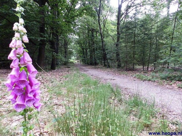 14-06-2014  Veenendaal        40 Km  (28)