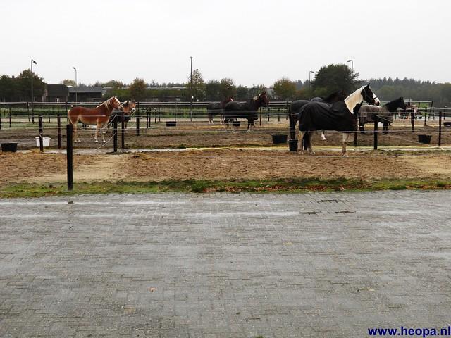 03-11-2012 Amerongen 30 Km (79)