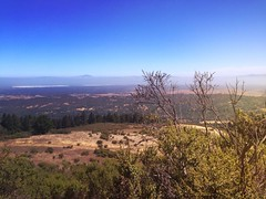 The View from Windy Hill