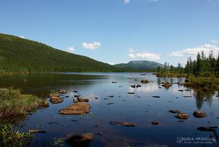 Parc national de la Gaspesie | by nuria.mpascual