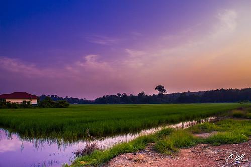 reflection water clouds sunrise landscape village fields padi kampung hdr sawah bendang desa