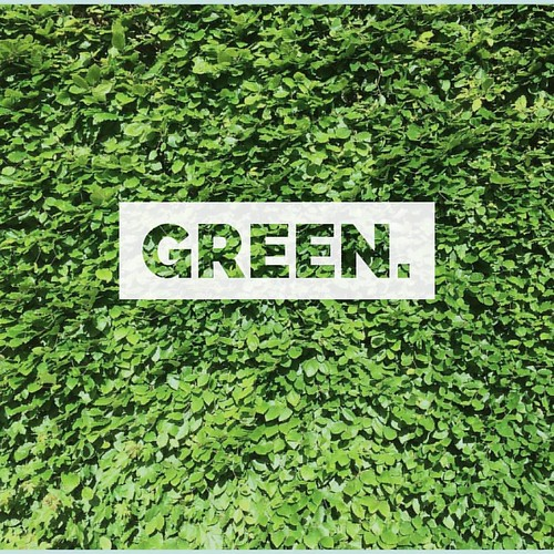 'green.' #ffcu #freefcu #stock #stockimages #stockphoto #stockphotos #stockphotography #freeforcommercialuse #blogger #bloggers #writers #businessowners #articlewriter #share #sharers #internet #photography #photographer #photographerswanted #color #colou | by Free for Commercial Use