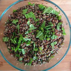 Avocado lentil salad as part of today's Eating For Health talk. The next talk I'm giving is on 6/25, 7pm at More Mojo. It's free and open to everyone!
