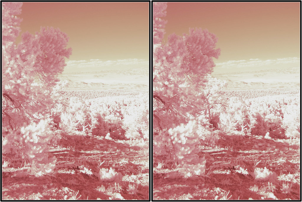 Ir Stereo Mt Charleston Infrared Parallel Stereo Pair Of M Flickr