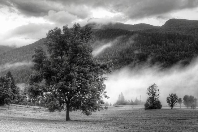 Evening Mists (explored)