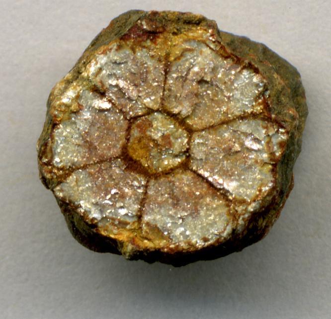 Cherry blossom stone (pinite) (muscovite mica replacing in