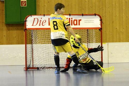 Junioren DII - Tigers Zäziwil Saison 2013/14