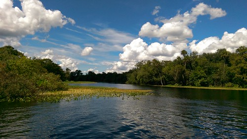stjohnsriver florida water outdoor lake river watercourse landscape sky