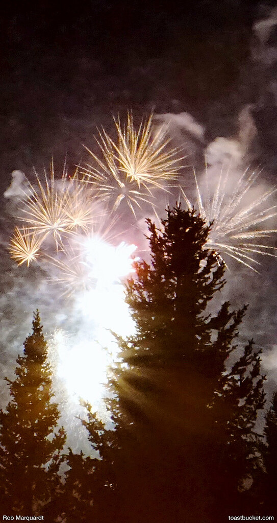 iPhone 6: Fireworks Through the Trees  Wallpaper designed f