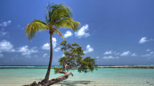 sony plage hdr guadeloupe caraibes tonemapping sonyalpha