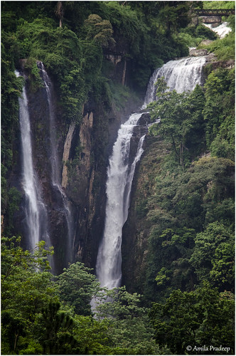 nature waterfall srilanka ramboda rambodafalls