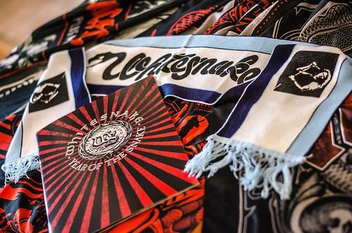 Whitesnake (36)