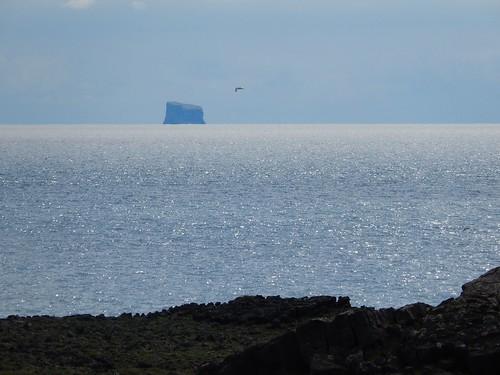 IJsland - Hafnaberg - 2