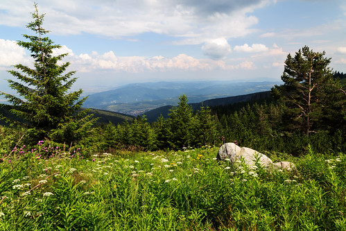 mountain view sofia bulgaria vitosha villygoutova вилигутова