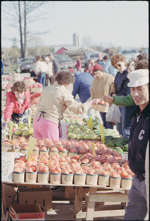 Produce sellers at the Waterloo Farmers Market, St. Jacobs