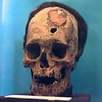 Mon, 06/30/2014 - 9:29pm - Paracas skull 2