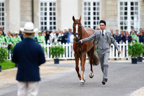 The trot-up at Haras Le Pin wearing Gieves & Hawkes Photo Xia Yuanpu | by noblehua1