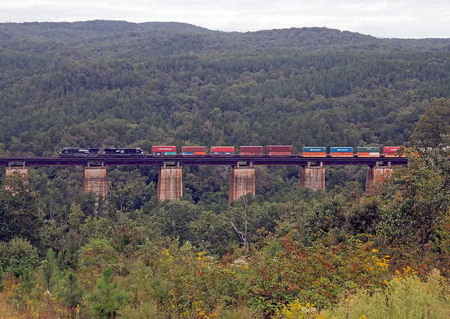 Train On Wells Viaduct