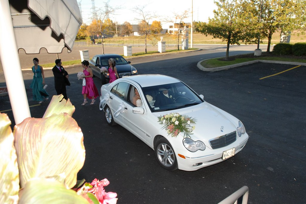 Farah Florist W-Car-3.      $80