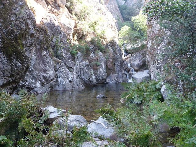07.01.14.Corse 2 Juin 2014