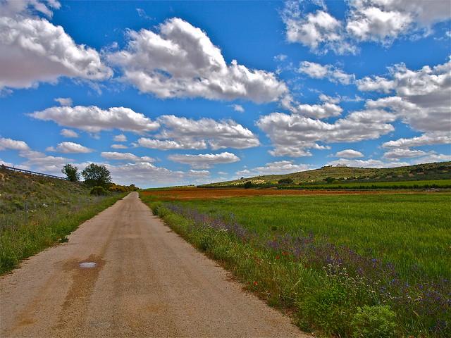 Camino de la Ermita.