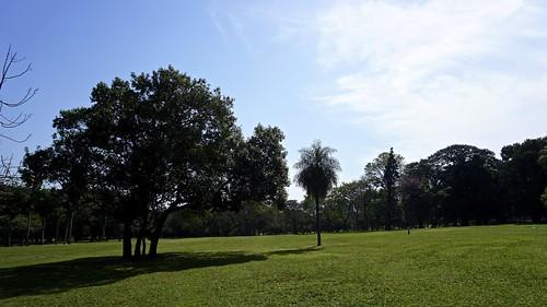 landscape outdoors jardin paisaje botanico asuncion paraguay