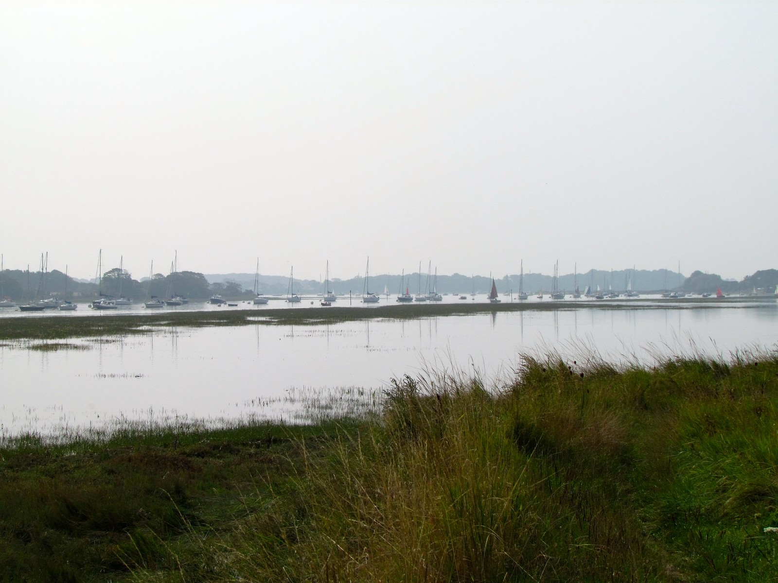 photo from walk Bosham Channel