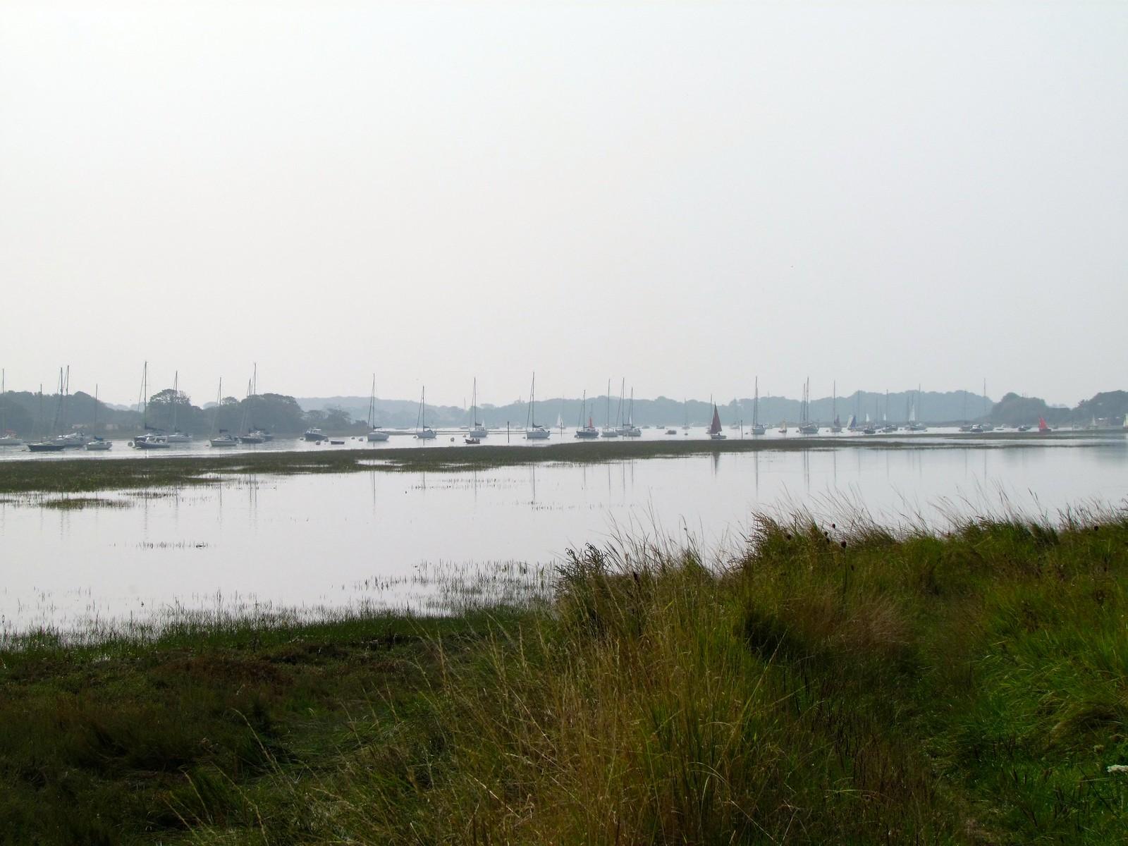 photo from walk Bosham Channel
