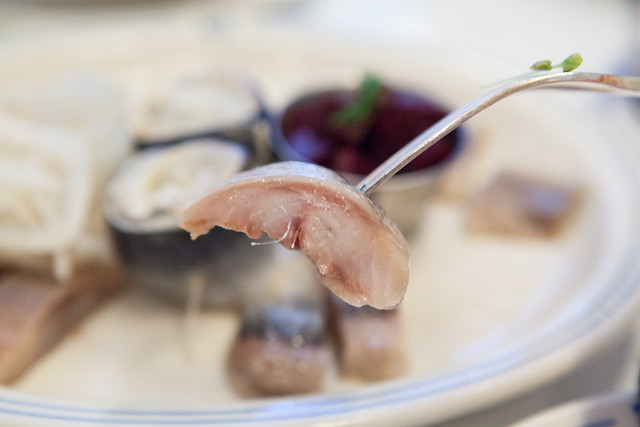 Close up of the fatty pickled herring