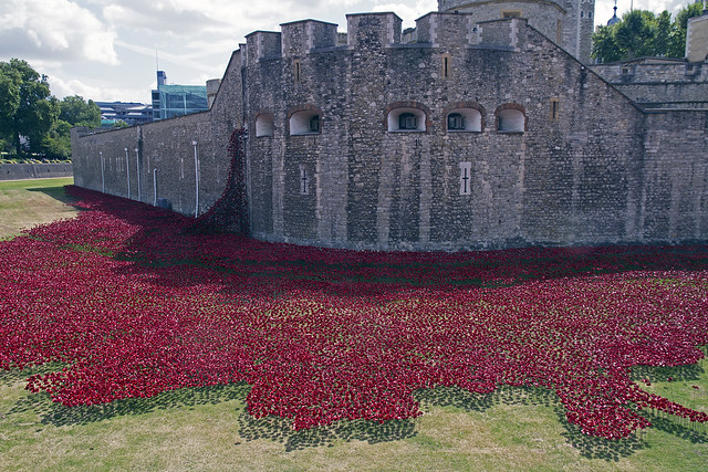 Carpet of Red in the moat