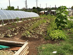 Oliver Community Farm