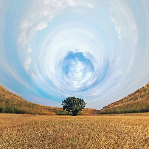 nature tree sky grass field blue yellow green cloud clouds minet country park hillingdon hayes god outdoor landscape science fiction space akruti by piyushgiri revagar wow photography kruti 22