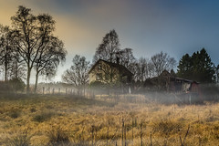'Abandoned farm in misty afternoon'