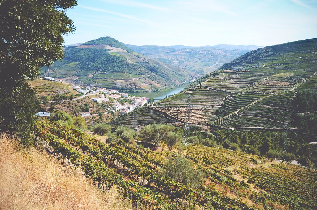 Wijnstreek de Douro in Portugal | via It's Travel O'Clock
