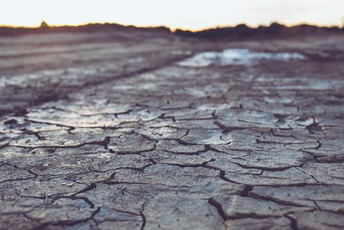 mud drymud