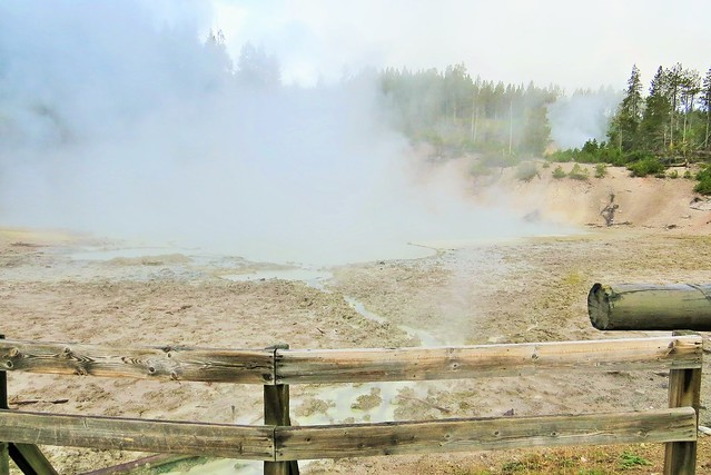 On the Mud Volcano Boardwalk