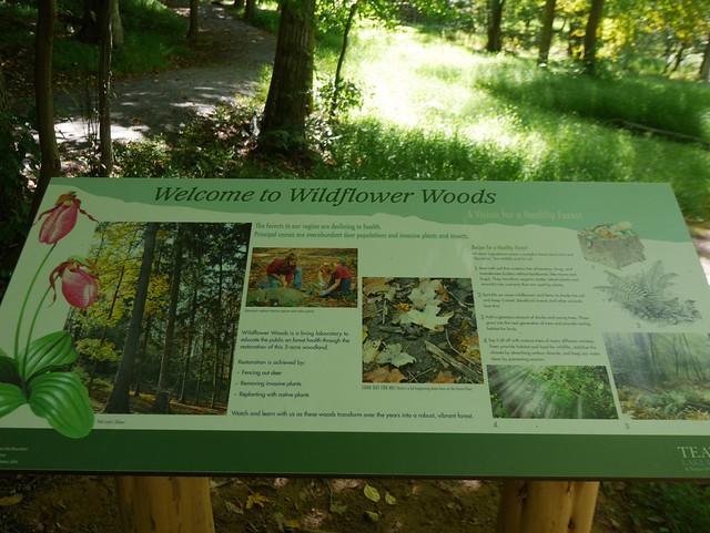 日, 2014-09-14 13:42 - Teatown Lake Reservation
