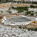 Unnamed hot springs south-southeast of Heart Spring (Geyser Hill Group, Upper Geyser Basin, Yellowstone Hotspot Volcano, nw Wyoming, USA)