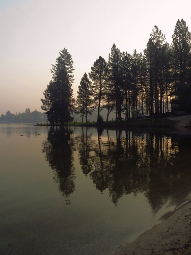 smoke water lake sunrise conifers forest mist fire forestfire autumn drought
