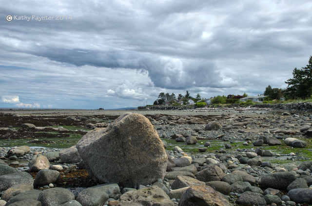 Low Tide Rocks!