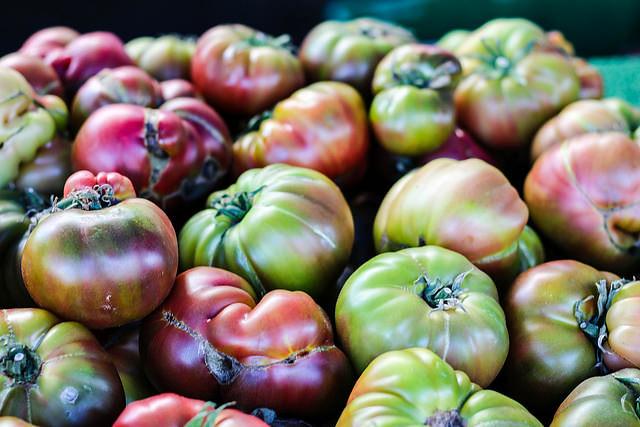 Planting Brandywine Tomatoes
