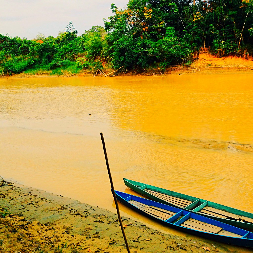Borneo Island: Sepauk River, West Kalimantan, Borneo Island, Indonesia#ex