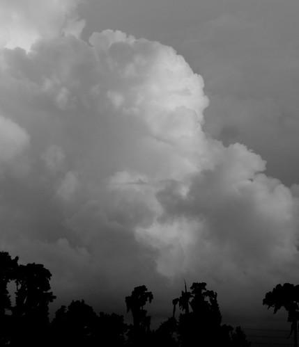 florida thunderstorm landolakes pascocounty